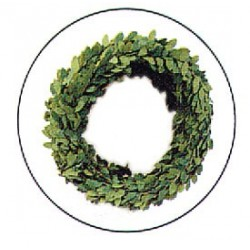 BOXWOOD GARLAND 15FT
