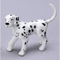 DALMATION/YOUNG BROTHER