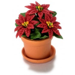 LARGE POINSETTIA IN POT