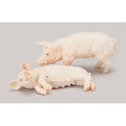 PIGS - SET OF 2