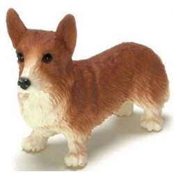 PEMBROKE WELSH CORGI, RED