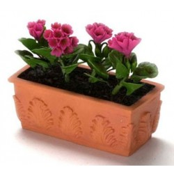 HOT PINK PERANIUM/WINDOW BOX