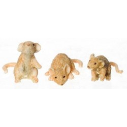 MICE SET OF 3/ORANGE