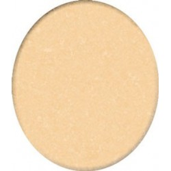 ++CARPET: BEIGE 0800, 14 X 18