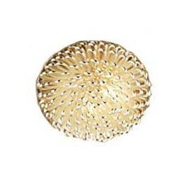 Silver Dome Ceiling Lamp