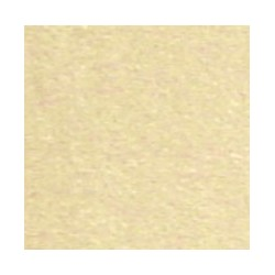 CARPET: BEIGE/TAN, 12 X 14