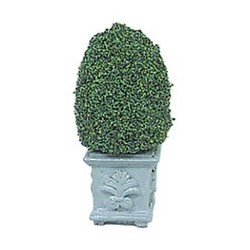 TOPIARY 4-1/2IN SQUARE BASE