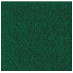 FOREST GREEN CARPETING, 12 X 14