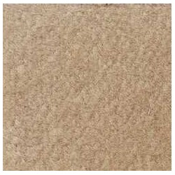 BEIGE CARPETING, 12 X 14