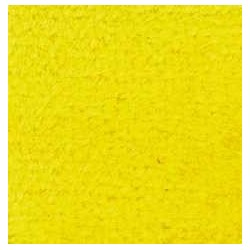 CARPET: YELLOW, 12 X 14