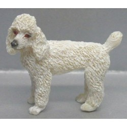POODLE-WHITE-STANDING