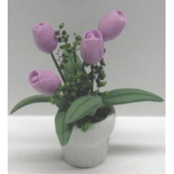 LAV. TULIPS/WHITE POT 1 3/4