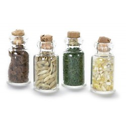 Spice Seed Jars/set/4
