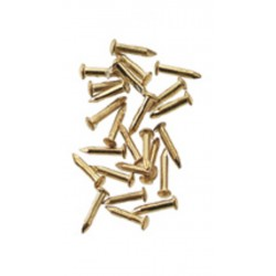 Brass Pin Nails/100pc/pk