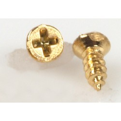 Small Brass Screws/20pcs