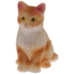 Yellow Tabby Cat Sitting