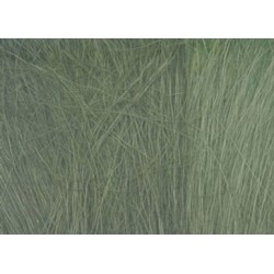 Field Grass-Medium Green