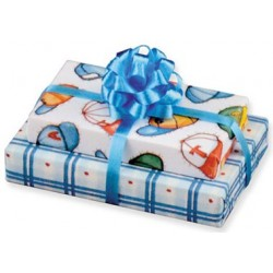 Baby Boy Double Gift with Bow