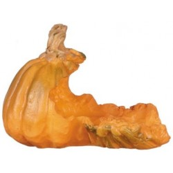 Open Pumpkin, 1pc