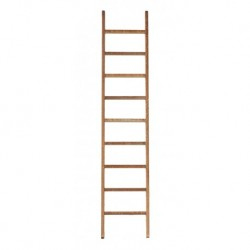 10in Ladder with Tread