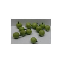 GREEN APPLES, S/12